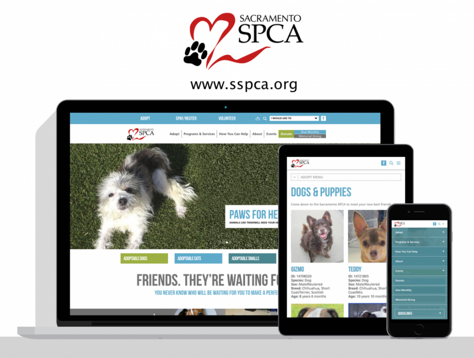 Sacramento SPCA  new website by Digital Deployment